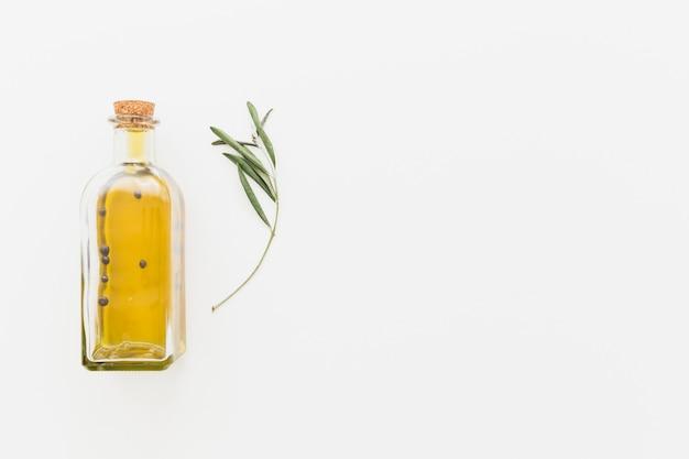 Bottiglia di olio con ramo verde