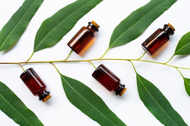 Bottiglia di olio di eucalipto con ramo di eucalipto su sfondo bianco.