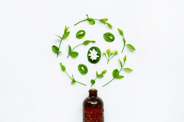 Bottiglia di olio essenziale con fiore di gelsomino e foglie su bianco.