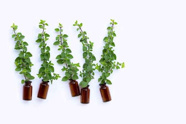 Bottiglia di olio essenziale con foglie di origano fresco su bianco
