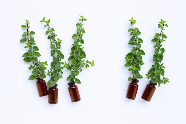 Bottiglia di olio essenziale con foglie di origano fresco