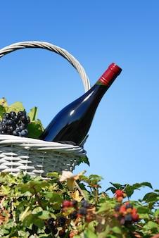 Bottiglia di vino rosso in un cestino