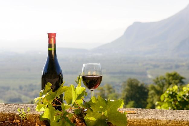 Bottiglia e bicchiere di vino rosso con un vigneto