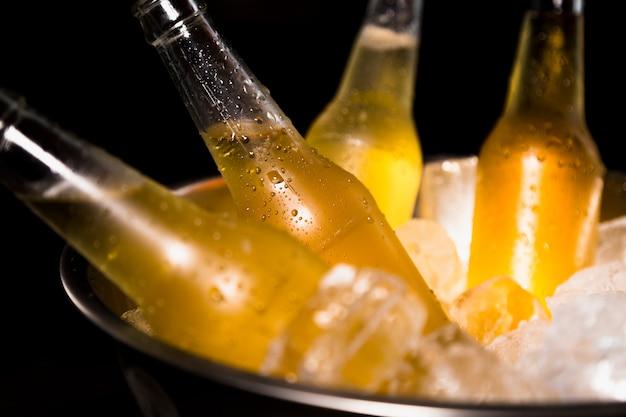 Bottiglie di birra con ghiaccio