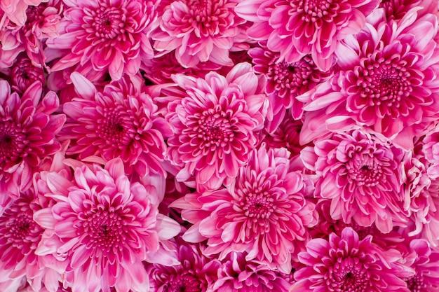 Bouquet di fiori di crisantemo