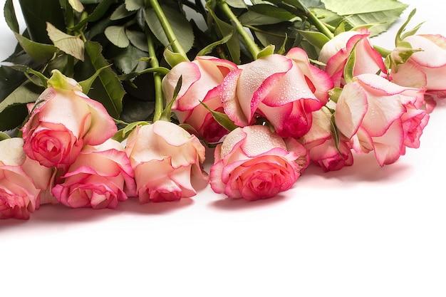Bouquet di fiori di rosa rosa su bianco