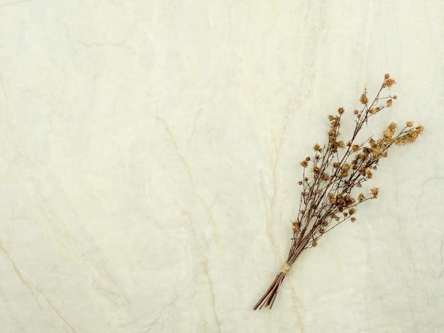 Bouquet di fiori secchi gypsophila per la decorazione