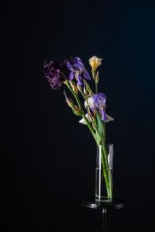 Bouquet di iris in un vaso di vetro su uno sfondo blu scuro