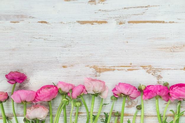 Bouquet di ranuncolo rosa, fiori di ranuncolo
