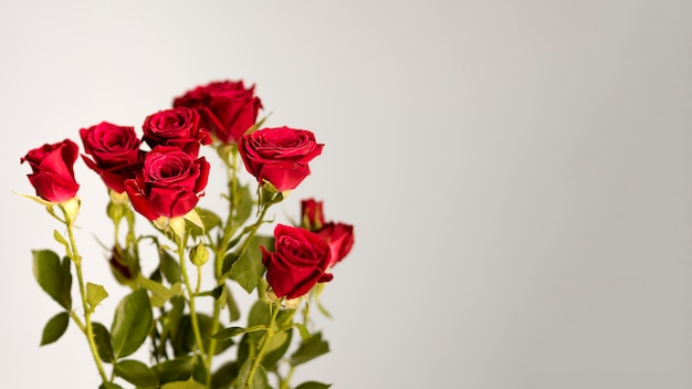 Bouquet di rose con spazio di copia