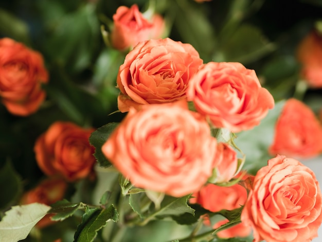 Bouquet di rose delicate