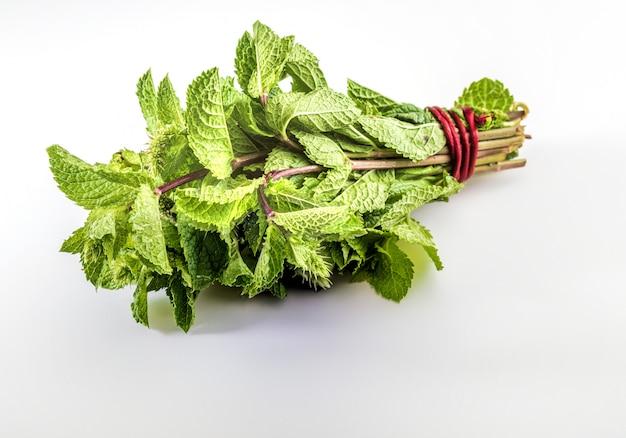 Bouquet di steli e foglie di menta verde fresca e cruda.