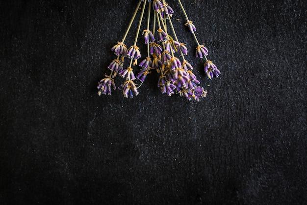 Bouquet di steli e petali di fiori di lavanda