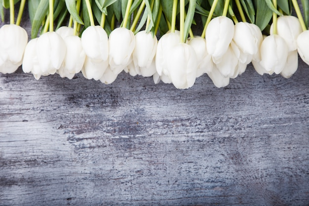 Bouquet di tulipani bianchi. fiori di primavera