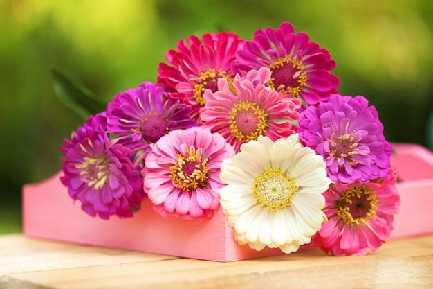 Bouquet di zinnie rosa, viola, bianche su verde