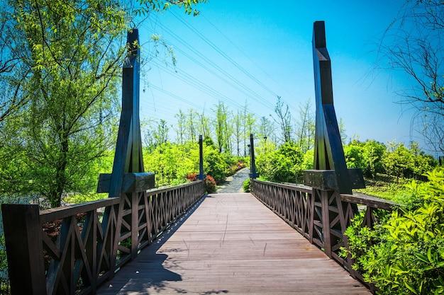 Bow bridge central park di new york