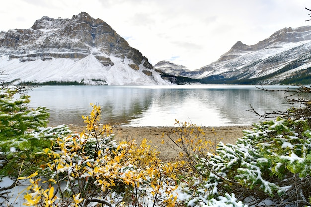 Bow lake, rocky mountains, banff, alberta, canada