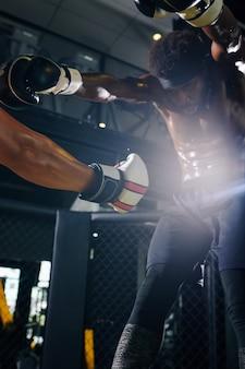 Boxer che dà un pugno allo stomaco