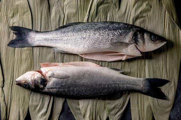 Branzino crudo del pesce crudo