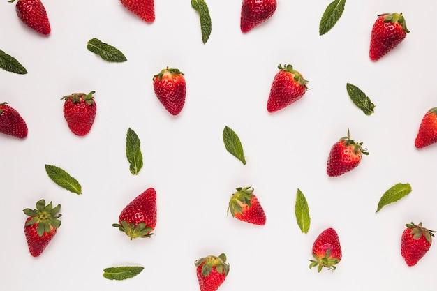 Brillante succose fragole e foglie verdi su sfondo bianco