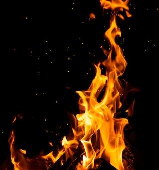 Brucia i tronchi di legno con alte fiamme e scintille