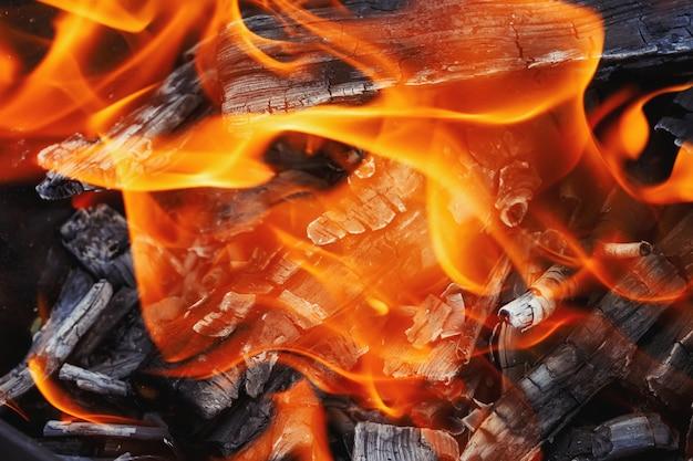 Bruciare legna in una griglia