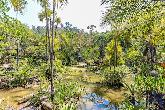 Brumadinho, minas gerais, brasile. vista dei giardini di inhotim