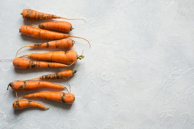 Brutta carota biologica mangiata da parassiti, viziata, coltivata in modo improprio.
