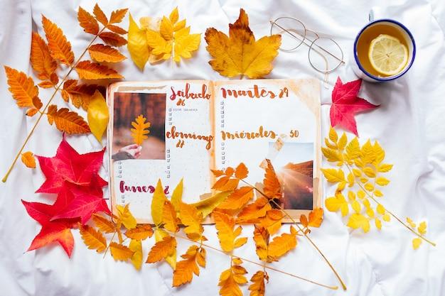 Bullet journal notepad pagine vuote in uno spazio accogliente con una tazza di smalto di tè allo zenzero al limone, bicchieri e foglie colorate d'autunnali su una coperta bianca.