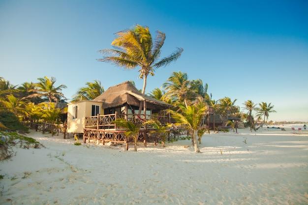 Bungalow tropicale della spiaggia sulla riva dell'oceano fra le palme