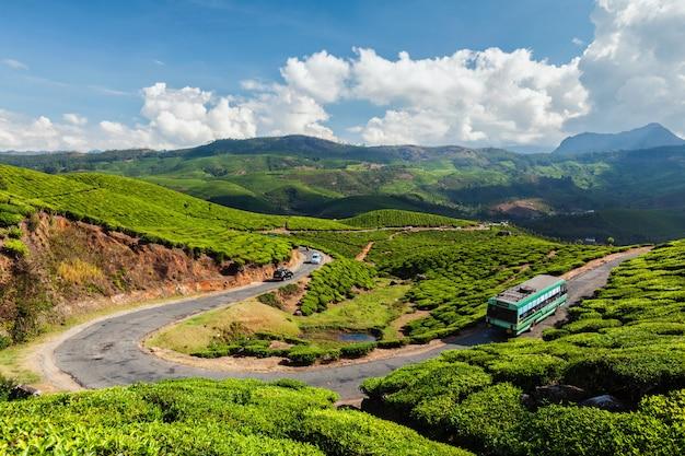 Bus passeggeri sulla strada nelle piantagioni di tè, india