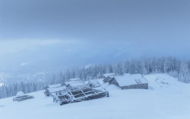Cabina in montagna in inverno. nebbia misteriosa. in previsione delle vacanze. carpazi. ucraina, europa