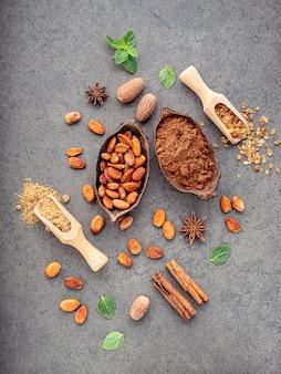 Cacao in polvere e fave di cacao