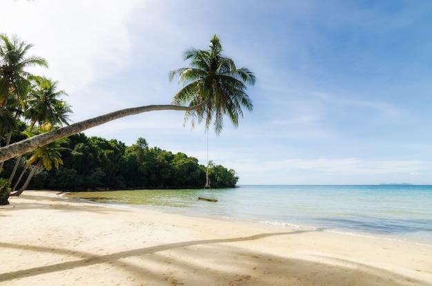 Caduta dell'oscillazione dall'albero della palma da cocco sopra il mare della spiaggia a phuket, tailandia.