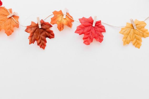 Caduta foglie sulla composizione di corda