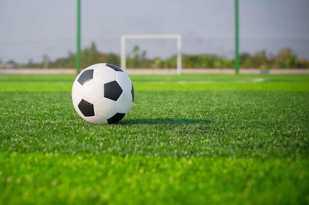 Calcio calcio sul campo di erba verde e palo della porta