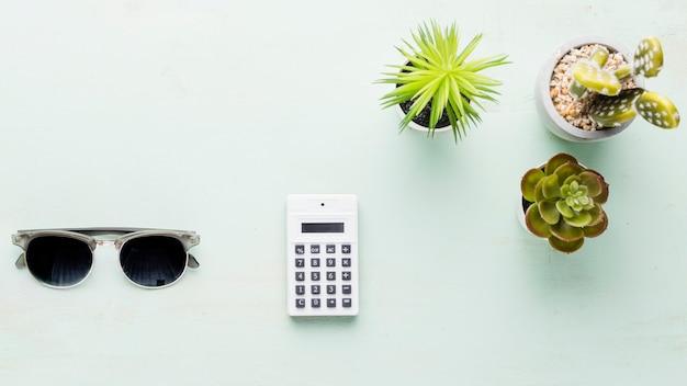 Calcolatrice e piccole piante ornamentali su superficie chiara