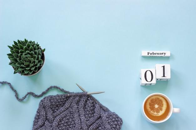 Calendario 1 febbraio. tazza di tè succulente e tessuto grigio