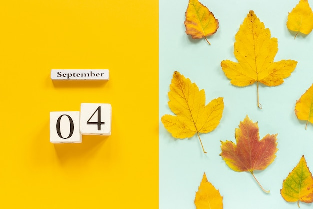 Calendario in legno 4 settembre e foglie di autunno gialle su fondo blu giallo.