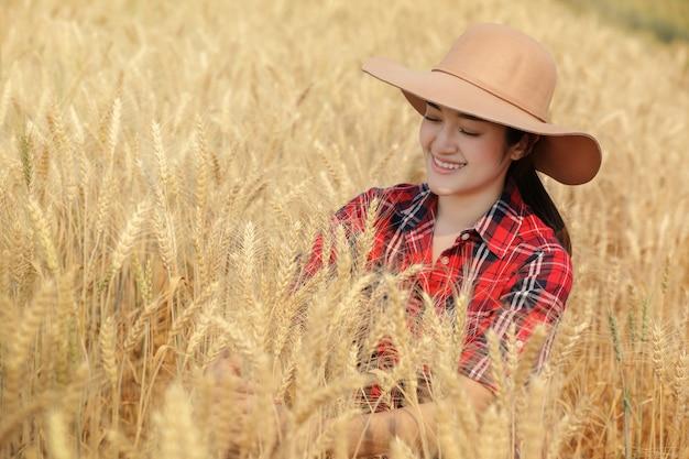 Camicia di scoth che avverte colore rosso della coltivatrice della giovane donna con il cappello che si siede nel terreno coltivabile dorato dell'orzo e molto soddisfatto della produttività a chiangmai tailandia.