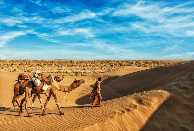 Cammelliere cammelliere con cammelli nelle dune del deserto del thar