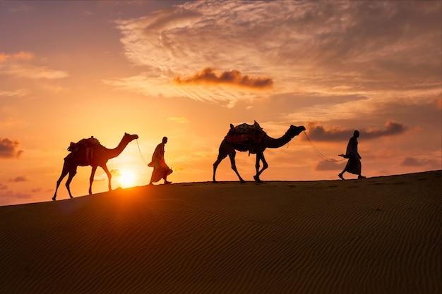 Cammellieri indiani beduini con le siluette del cammello in dune di sabbia del deserto del thar sul tramonto.