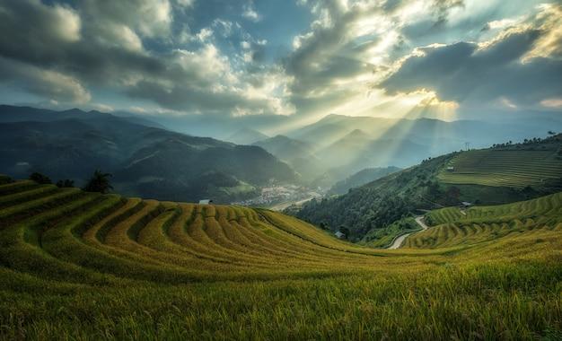 Campi di riso terrazzati di mu cang chai, yenbai, vietnam.