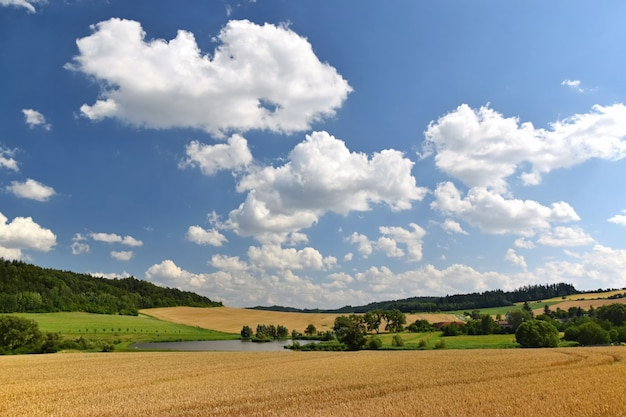 Campo con le nubi