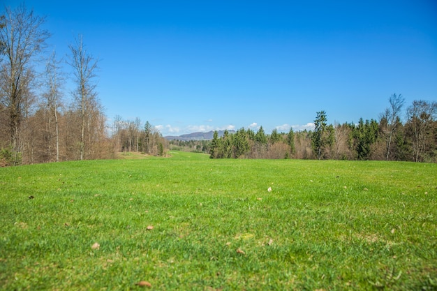 Campo da golf a otocec, slovenia in una soleggiata giornata estiva