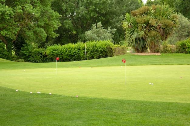 Campo da golf con alberi, palle e pioli