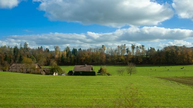 Campo di campagna con cielo blu