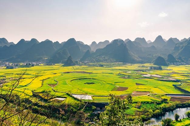 Campo di fiori e villaggi di colza al wanfenglin national geological park (foresta delle diecimila cime), cina