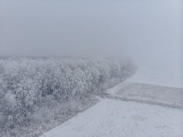Campo e alberi congelati bianchi in nebbia in inverno, vista aerea dal livello