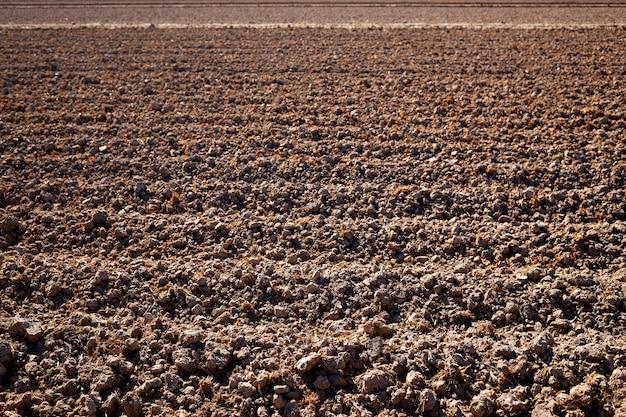 Campo secco delle risaie di albufera a valencia